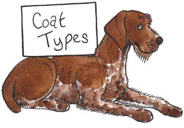 types of coats