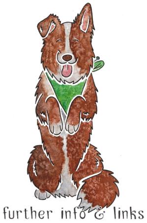 a dark brown dog summary