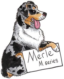 Окрасы собак Мерле-окрас - Форум