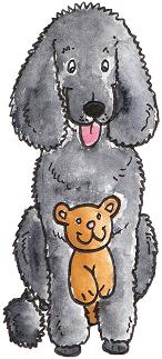 Dog Coat Colour Genetics Chimera Genetics Dog